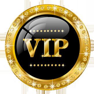 VIP Elektro Servis